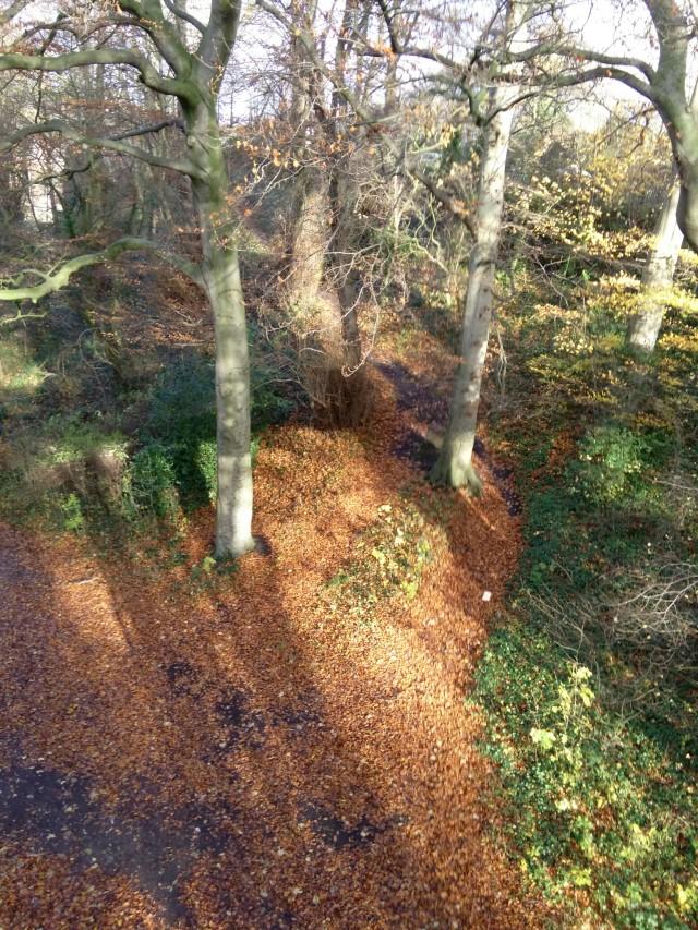 Dingle Aerial 2